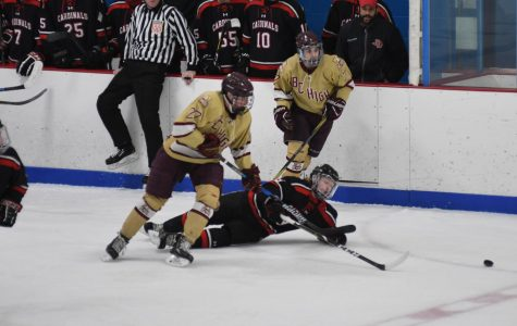 Hockey advances to state finals at Garden